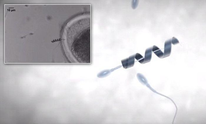 Нанороботы-рыбы, предназначенные для работы внутри кровеносной системы человека