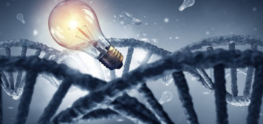 Молекулы ДНК передают ток