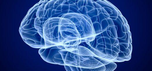 Создание искуственного мозга
