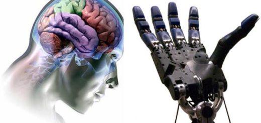 Главный биотехнолог DARPA: «2017 год вынесет нам мозг»
