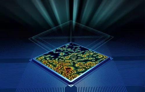Биологический чип