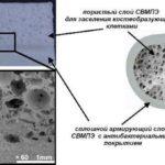 Российские ученые создали сверхвысокомолекулярный полиэтиленовый имплант костей